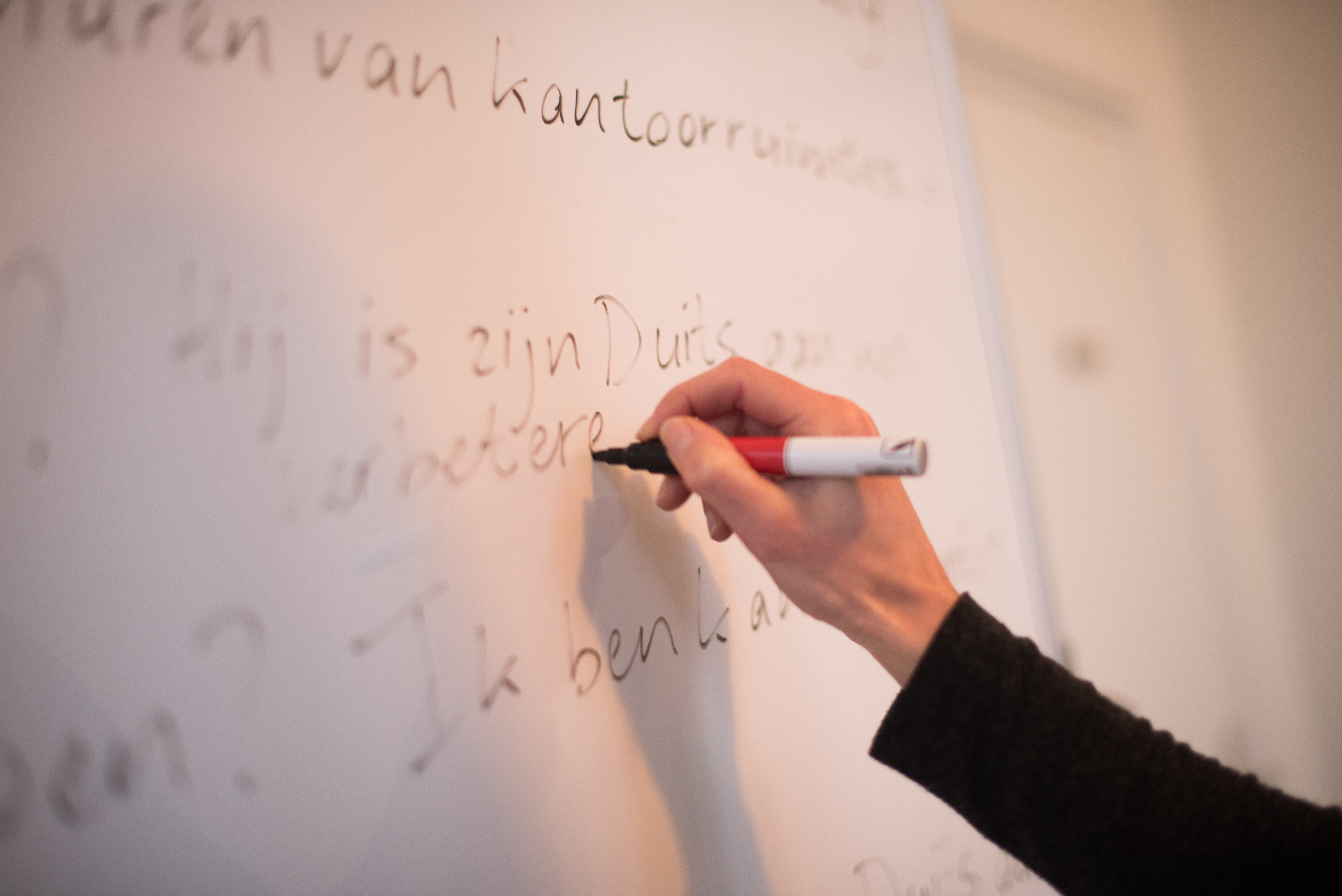 vacature taaltrainer